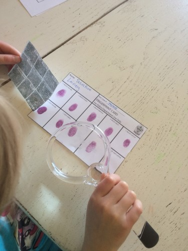 Fingerprint Kit Monthly Science And Art Projects For