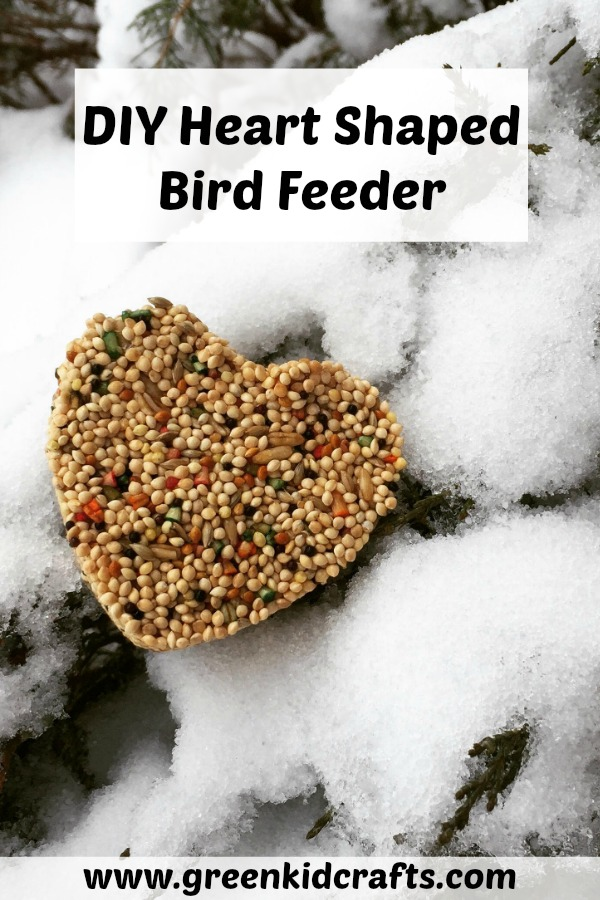DIY Heart Shaped Birdfeeder. Make a treat for the birds with an easy bird feeder diy. Nature craft.