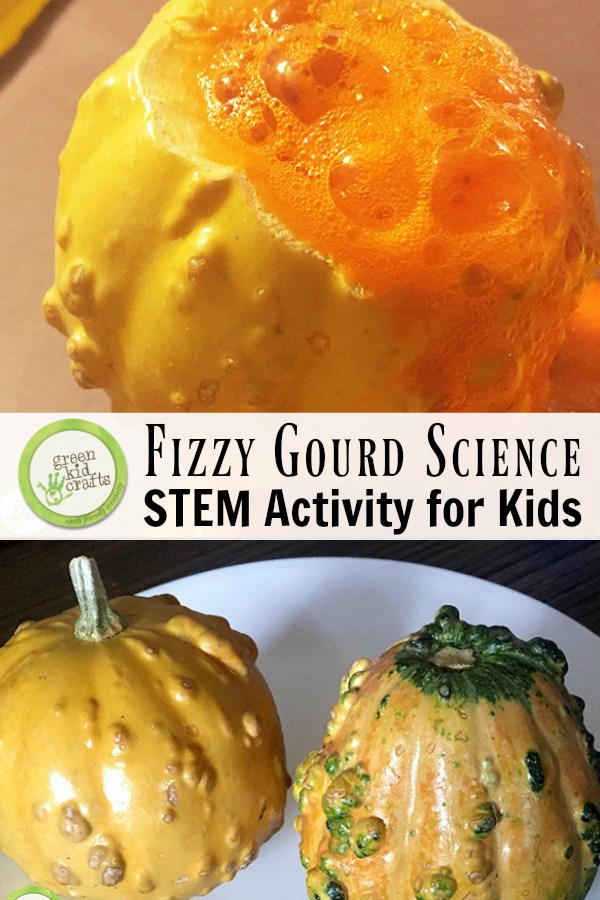 Fizzy gourd science activity for kids. A STEM project perfect for fall!