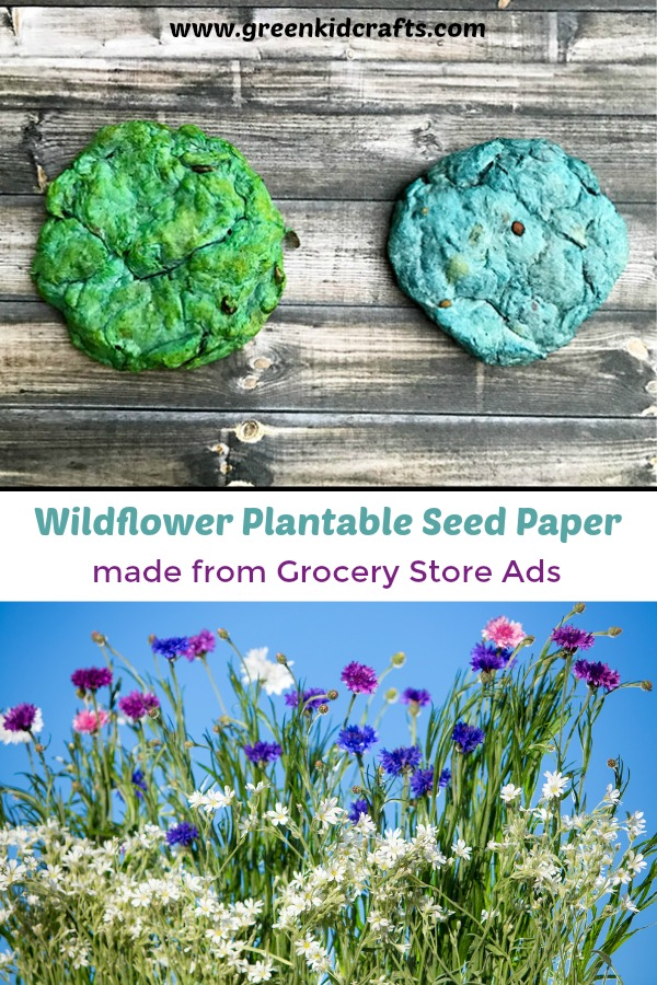 Make your own plantable seed paper from recycled grocery store ads! DIY seed paper for party favors, gifts or plant them in your own garden...