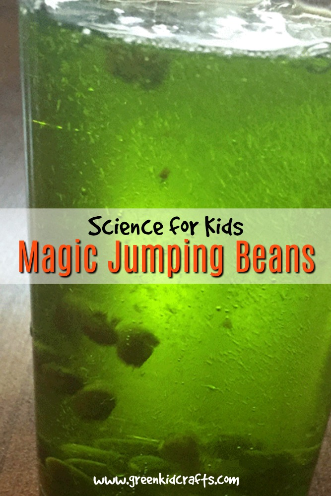 Magic jumping beans science experiment for kids. Trick your audience into believing you can make beans jump around in a glass filled with only water! Magic tricks for kids.