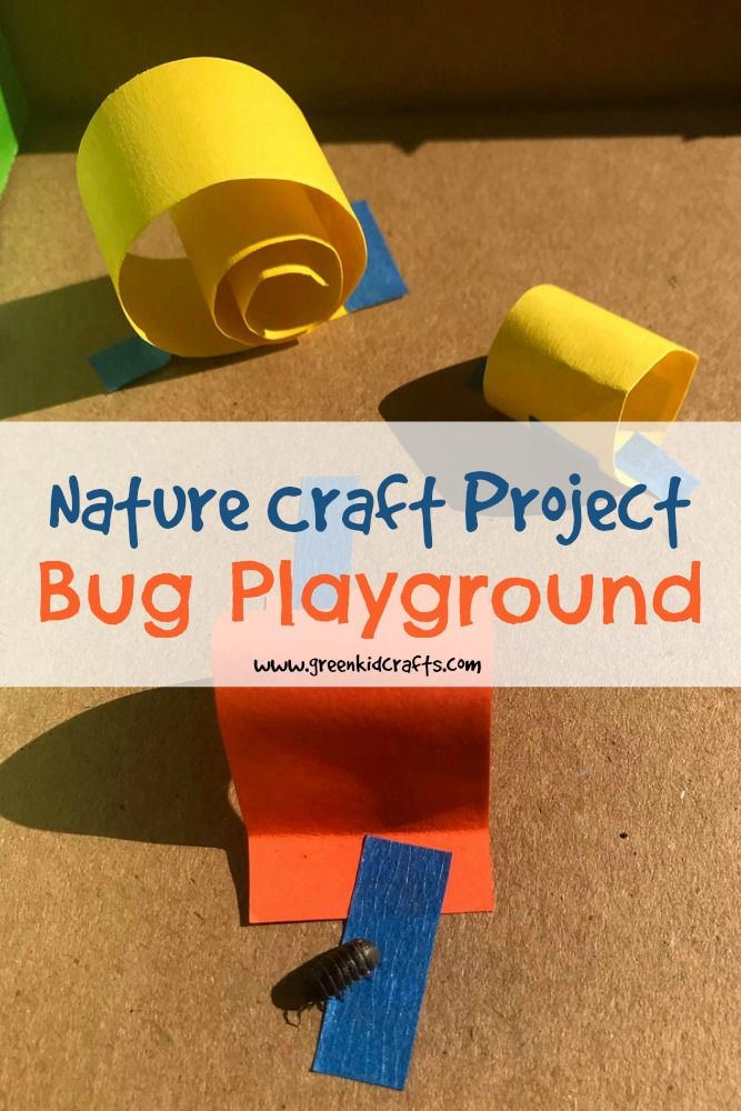Make a playground for bugs from a cardboard box! #naturecrafts #insectcrafts